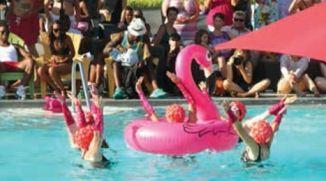 """""""DCFit-tastics"""" perform their Flamingo Fantasy. Photo: Perry Klein"""